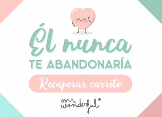 Copy carrito Mr. Wonderful
